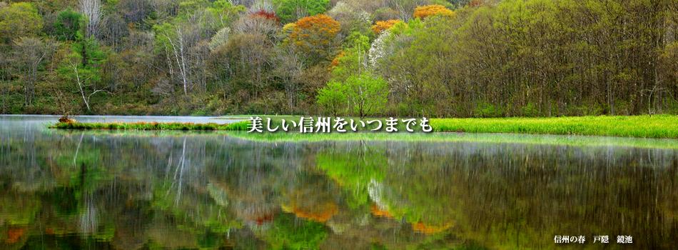 春 戸隠 鏡池